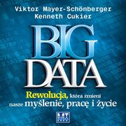 Big Data, Mayer-Schonberger Viktor