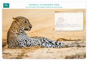 Planer tygodniowy Leopard in sand,