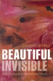 ksiazka tytuł: Beautiful Invisible: Creativity, imagination, and theoretical physics autor: Giovanni Vignale