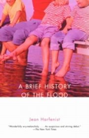 ksiazka tytuł: Brief History of the Flood autor: Jean Harfenist