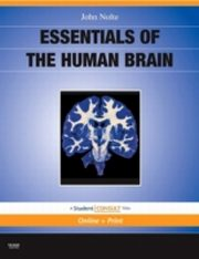 ksiazka tytuł: Essentials of the Human Brain autor: John Nolte