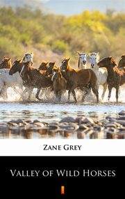 Valley of Wild Horses, Zane Grey
